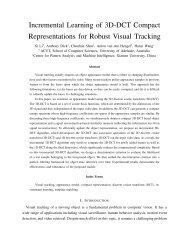 Incremental Learning of 3D-DCT Compact Representations for ...