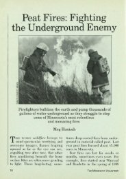 1171 Peat Fires: Fighting the Underground Enemy - webapps8