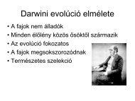 Fenotípus evólúció
