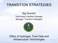 Transition Strategies: Government Options and Market ... - EERE
