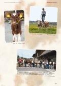 swissherdbook bulletin 5-2012-3-f - Page 3