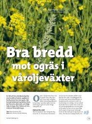 Bra bredd mot ogräs i våroljeväxter - Svensk Raps