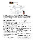 An attention framework for learning by interaction in ... - LASA - EPFL - Page 4