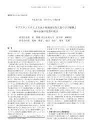 PDF (1.9 MB) - 埼玉医科大学