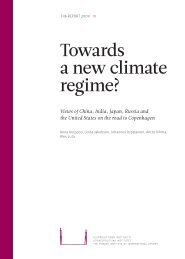 Towards a new climate regime? - UNDPCC.org