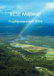 Projektpresentation 2004 - Mistra