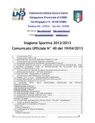 COMUNICATO n.40 del 19/04/2013 - FIGC