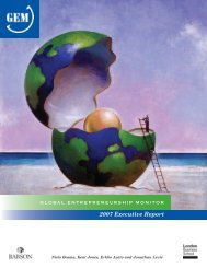 GEM 2007 executive report