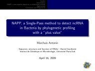 NAPP, a Single-Pass method to detect ncRNA in Bacteria by ... - Inra