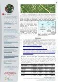 CL RESIN - TrisKem International - Page 4