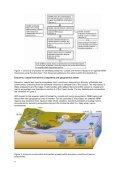 Download Executive Summary - OzCoasts - Page 4