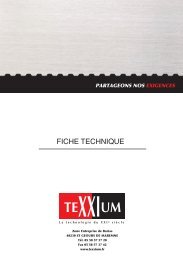 flexim 300 - TeXXIum