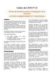 Cahier du CEPI N° 23 Etude de positionnement ... - Tunisie industrie