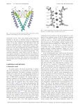 Cooperative transport in a potassium ion channel - Page 2