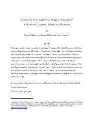 Can Nuclear Power Supply Clean Energy in the Long Run? A Model ...
