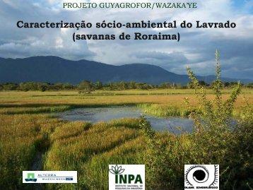 Caracterização sócio-ambiental do Lavrado (savanas de Roraima)