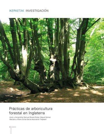 La enfermedad del chancro en eucaliptos del País Vasco