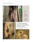 La enfermedad del chancro en eucaliptos del País Vasco - Page 5
