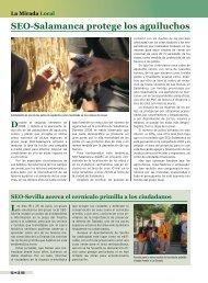SEO-Salamanca protege los aguiluchos - SEO/BirdLife