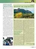 SEO-Salamanca protege los aguiluchos - SEO/BirdLife - Page 2