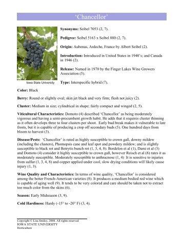 'Chancellor' - Viticulture Iowa State University