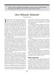 After Mubarak, Mubarak? - Wordpress Wordpress