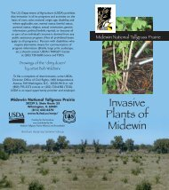 Invasive Weed Guide.qxd - USDA Forest Service - US Department of ...