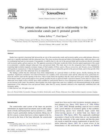 The primate subarcuate fossa and its relationship to the semicircular ...