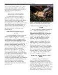 Herbicidas para exterminar árboles invasivos - Manatee County ... - Page 3
