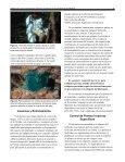 Herbicidas para exterminar árboles invasivos - Manatee County ... - Page 4