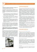PROGRAMA OIMT – CITES PARA LA IMPLEMENTACIÓN ... - ITTO - Page 6