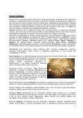 Planul Regional de Actiune pentru Turism Nord-Est 2008-2013 - Page 6