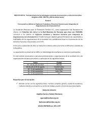 La Fundación Mexicana para la Planeación Familiar A.C. ... - Proyecto