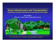 Green Infrastructure and Transportation