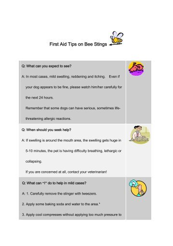 First Aid Tips on Bee Stings