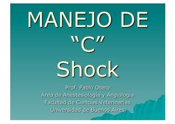 Presentacion Sock.pdf