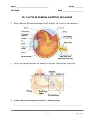 sensory and motor mechanisms - Explore Biology