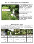 Riparian Assessment Guide - Page 3