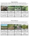 Riparian Assessment Guide - Page 6