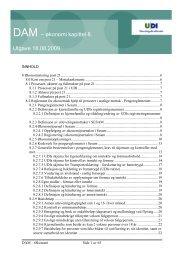 DAM – økonomi kapittel 8. Utgave 18.08.2009 - UDI