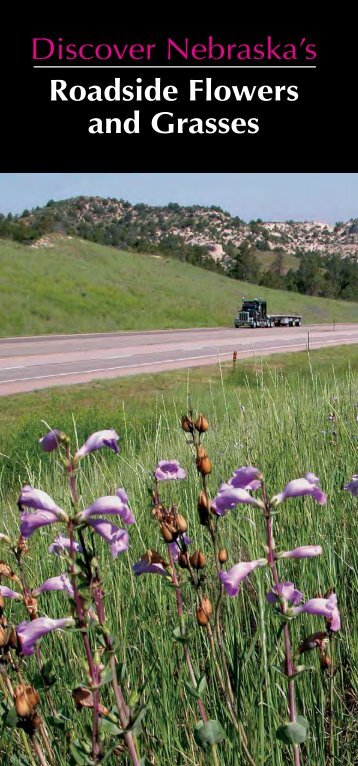 Roadside Vegetation in Nebraska - Nebraska Department of Roads