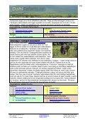 Tanzania resor med två dagar safari i nordvästra ... - Dahl Safaris - Page 4