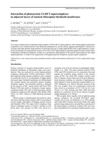 Bumba L., Husak M. and Vacha F - Institute of Plant Molecular Biology
