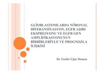 glioblastomlarda nöronal diferansiyasyon, egfr aşırı ekspresyonu ve ...