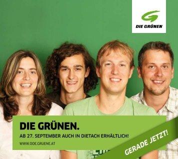 Flyer - Gerade Jetzt - Die Grünen