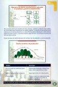 manual de cortinas forestales - Page 7