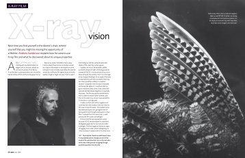 X-ray film - Andrew Sanderson
