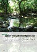 PDF formatu (2.7 Mb) - Kapucini - Page 4