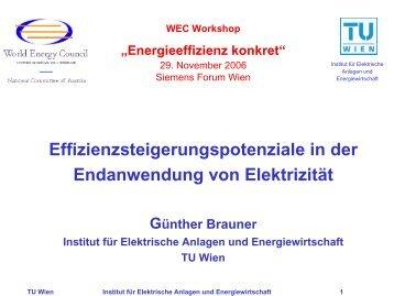 Effizienzsteigerungspotenziale in der Endanwendung von ... - WEC
