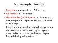 Metamorphic texture